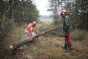 CAP Agricole Spécialité : Travaux Forestiers