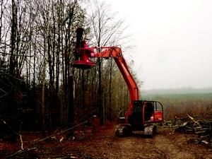 BAC Pro Spécialité : Forêt