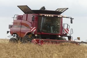 BAC Pro Conduite et Gestion des  Exploitations Agricoles Grandes cultures ou Polyculture – Élevage
